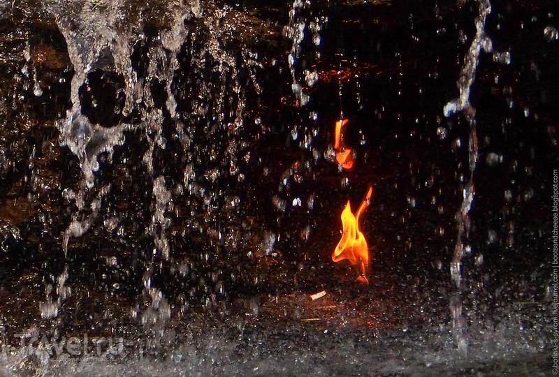 Огонь, вода и пьяные панки / США