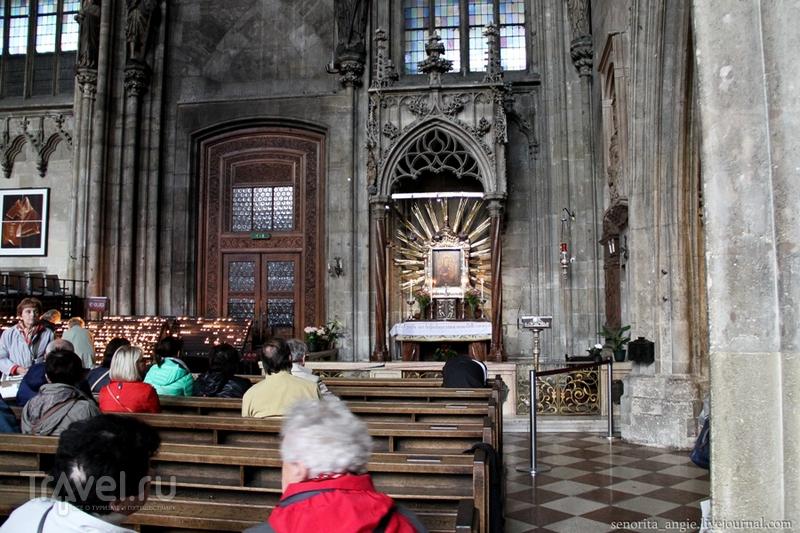 Собор Святого Стефана в деталях, Вена. / Австрия