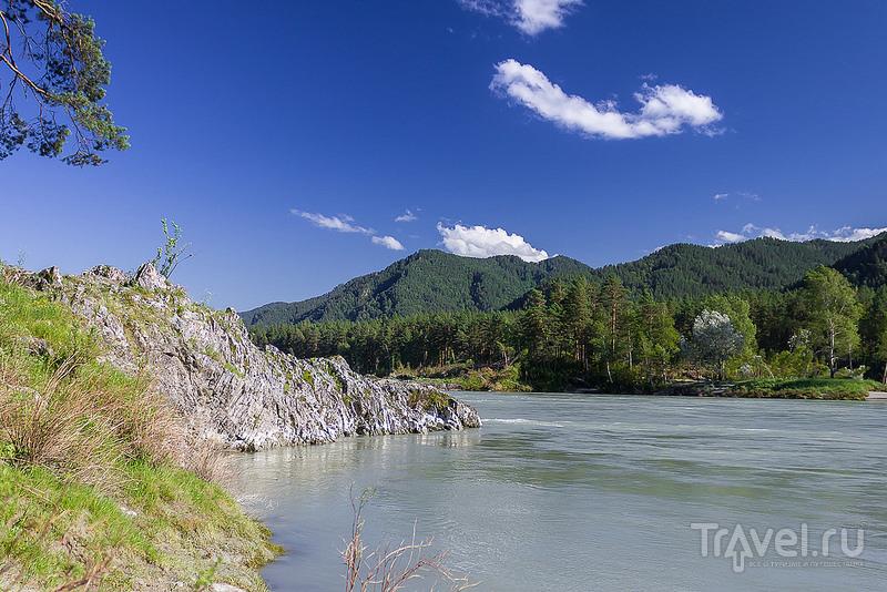 Блиц-поездка в Горный Алтай / Фото из России