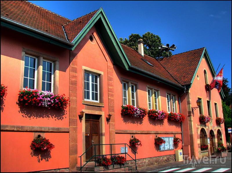 Ottrott. Эльзас. Франция / Фото из Франции