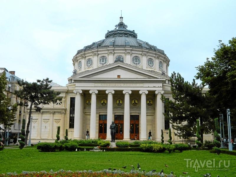 Бухарест. Проспект Победы / Фото из Румынии