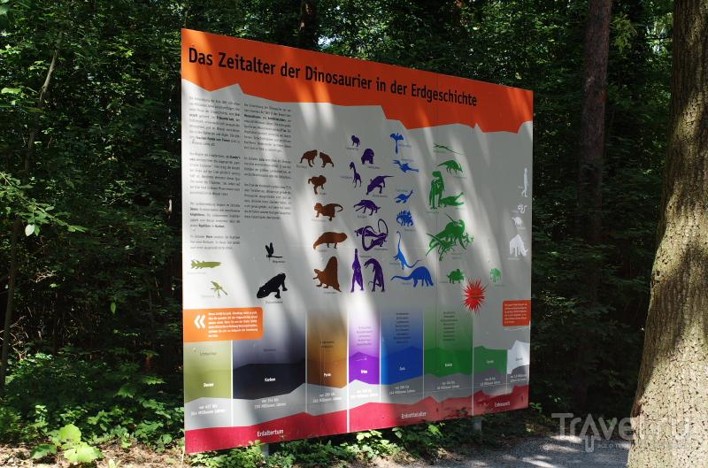 Парк динозавров в Германии / Фото из Германии