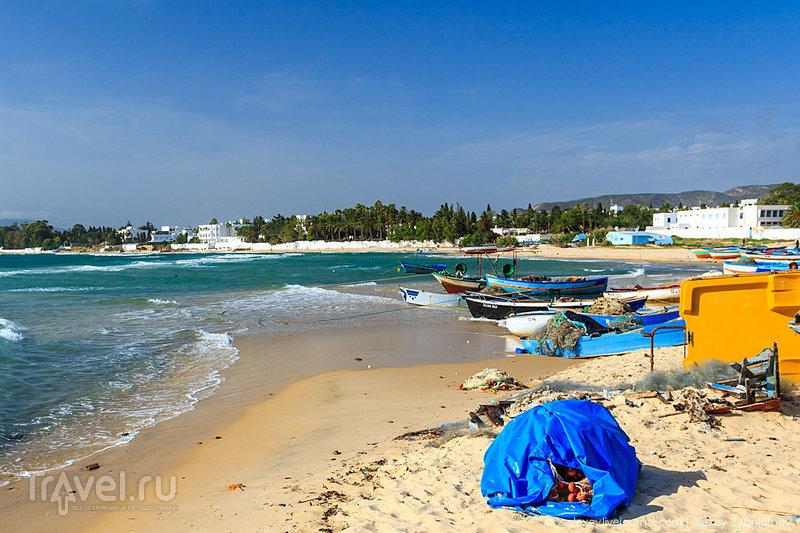 Скучный Тунис: почему не стоит ехать в эту страну / Тунис