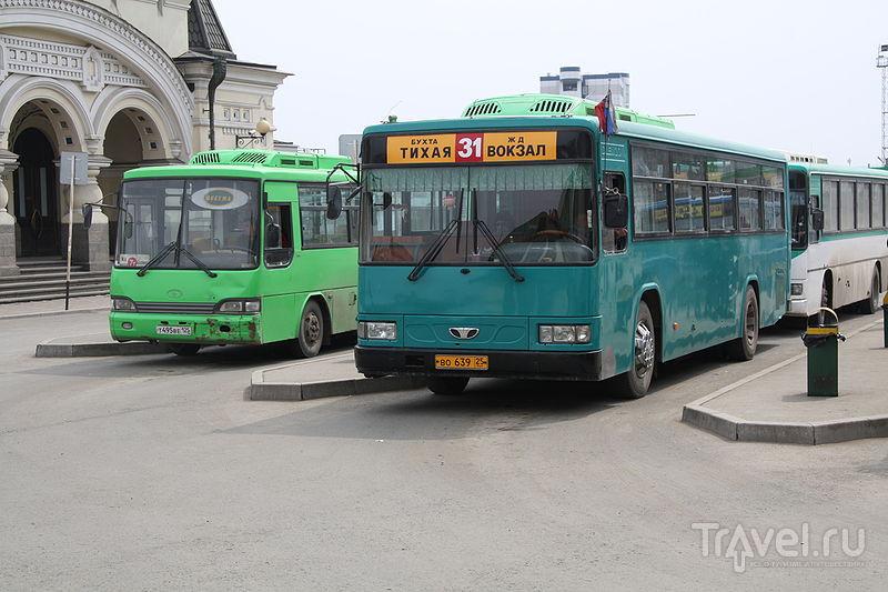 особенности автобусы до саноторной с центра расходам