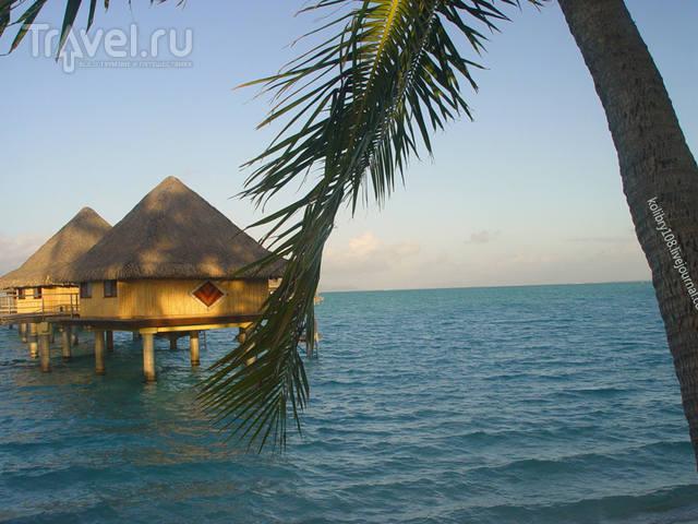 """""""Аквасафари"""" на острове Бора-Бора / Французская Полинезия"""