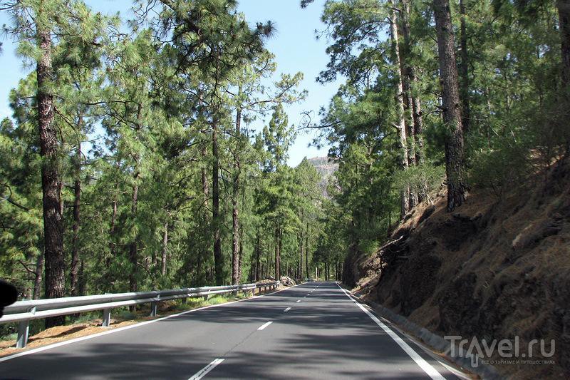 Тейде. Дорога из Лас Америкас / Фото из Испании