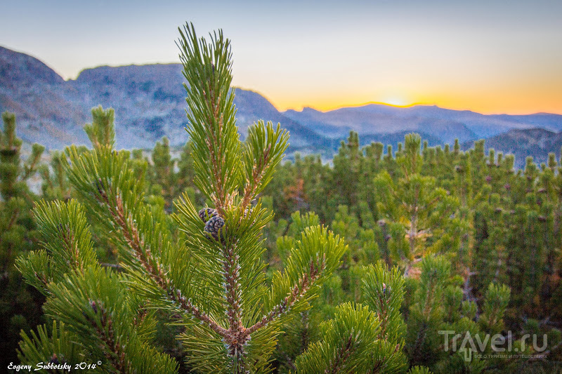 40 дней в горах Болгарии / Болгария
