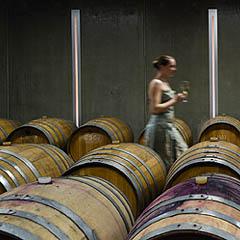 Вена, Вино и Дизайн – совмести полезное с приятным!