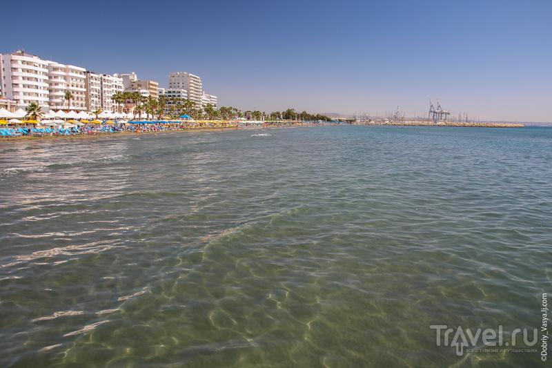 Кипр, Ларнака: вдоль финиковых пальм финикийского города / Кипр
