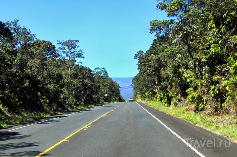 Гавайские острова: Большой остров / Фото из США