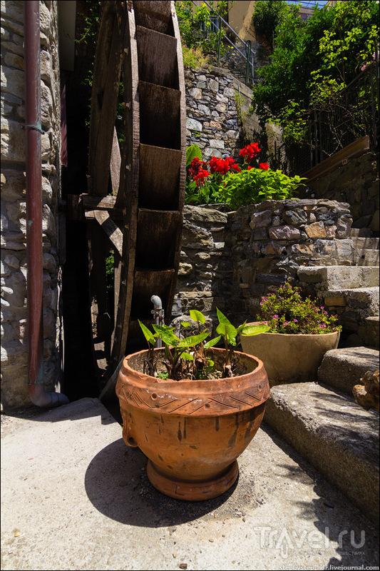 Manarola - прогулка по городу / Фото из Италии