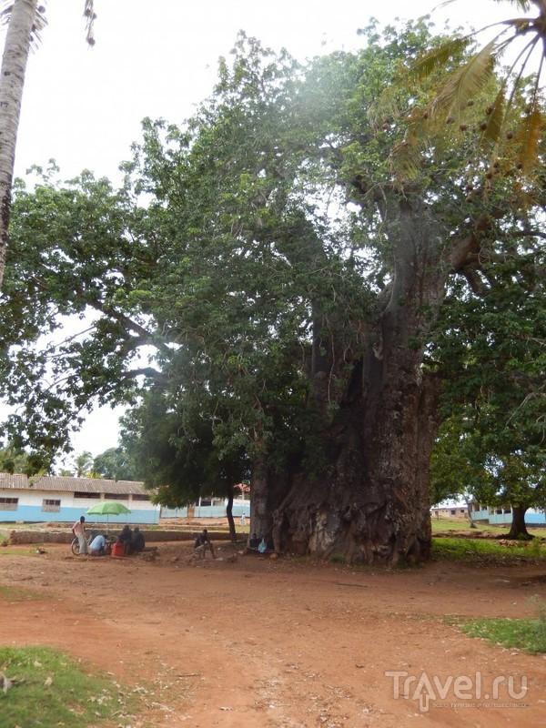 Занзибар / Танзания