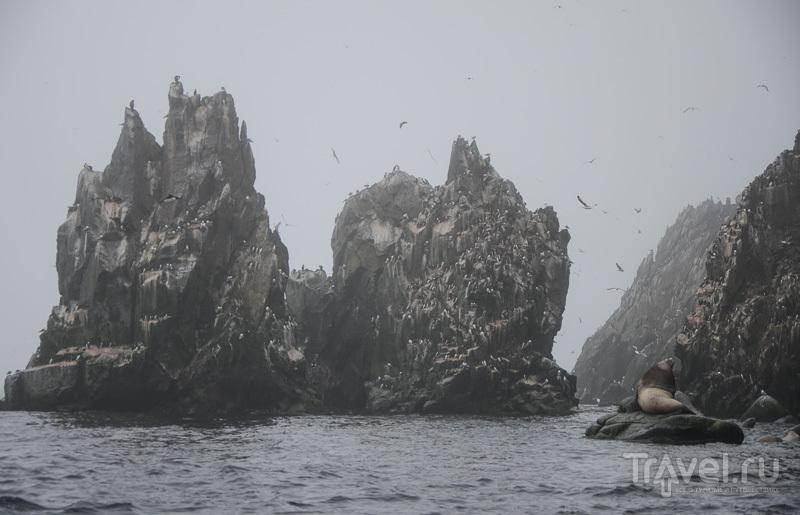 Остров Ионы / Фото из России