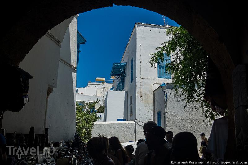 """Сиди-бу-Саид: бело-синий """"уникальный"""" / Фото из Туниса"""