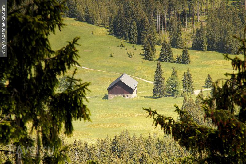Панчирж - гора и горный приют, Шумава / Чехия