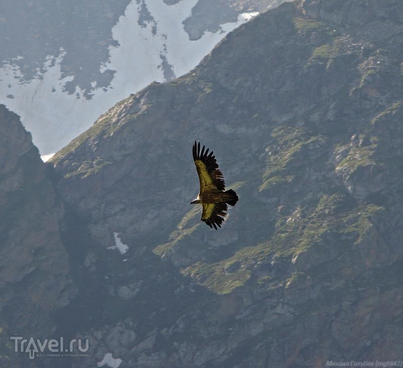 По горам Карачаево-Черкесии и Северной Осетии / Фото из России