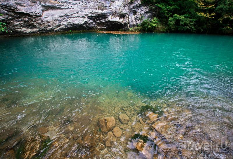 Осень на озере Рица / Фото из России