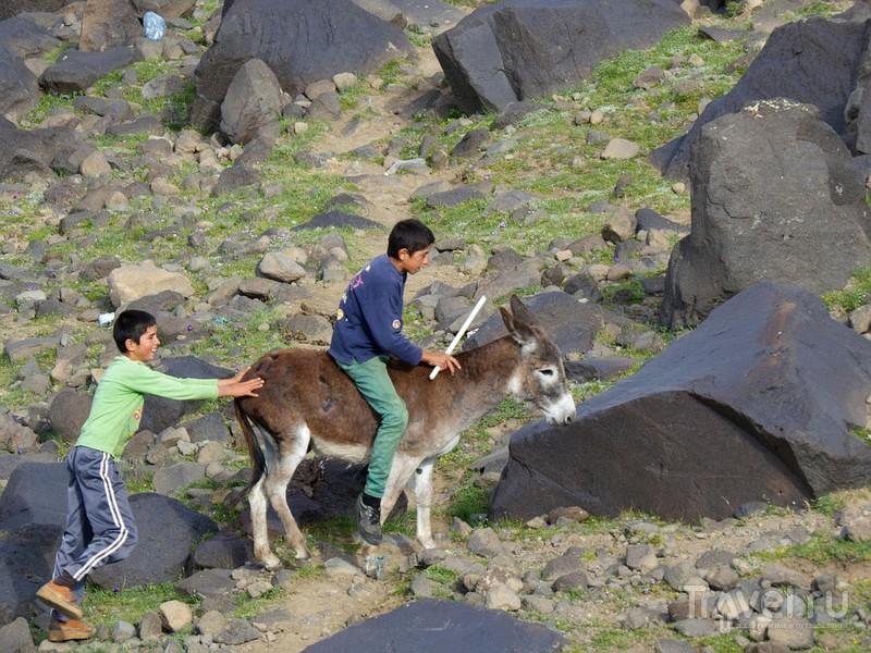Восхождение на Арарат / Фото из Турции
