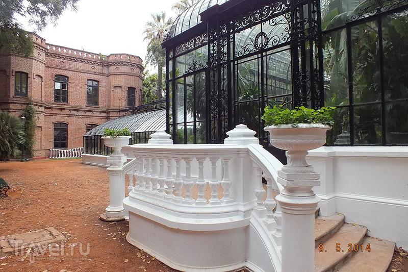 Буэнос-Айрес. Ботанический сад / Аргентина