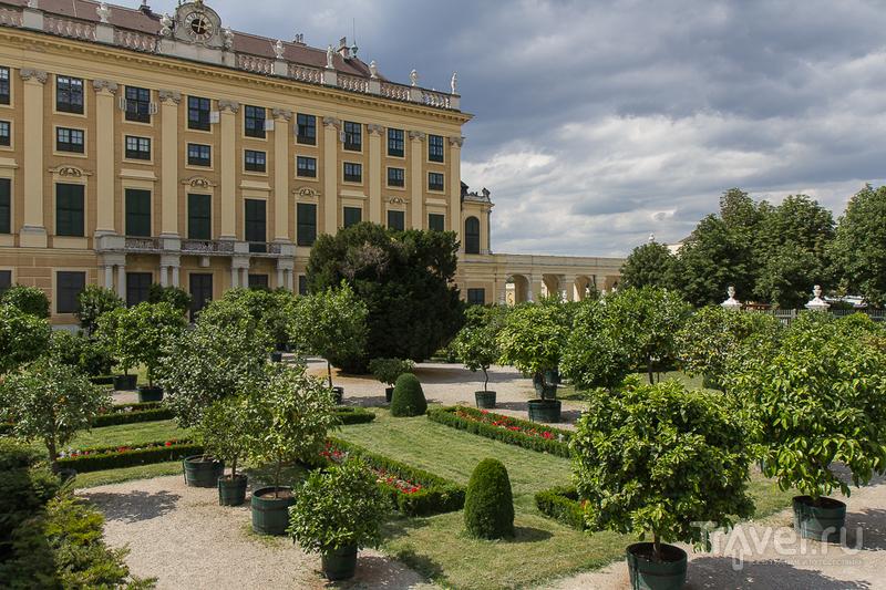 Дворец Шёнбрунн, Вена / Фото из Австрии
