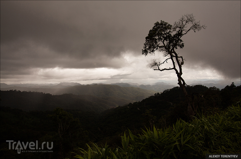 Северный Таиланд в картинках / Фото из Таиланда