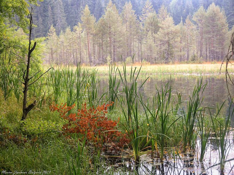Массив Родопи - Чаирски Езера. Слова почти не нужны / Болгария