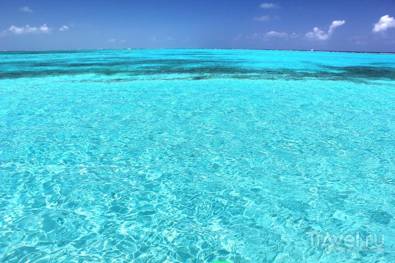 Каймановы острова / Фото с Каймановых островов
