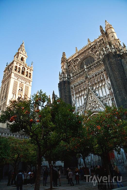 Севилья / Фото из Испании