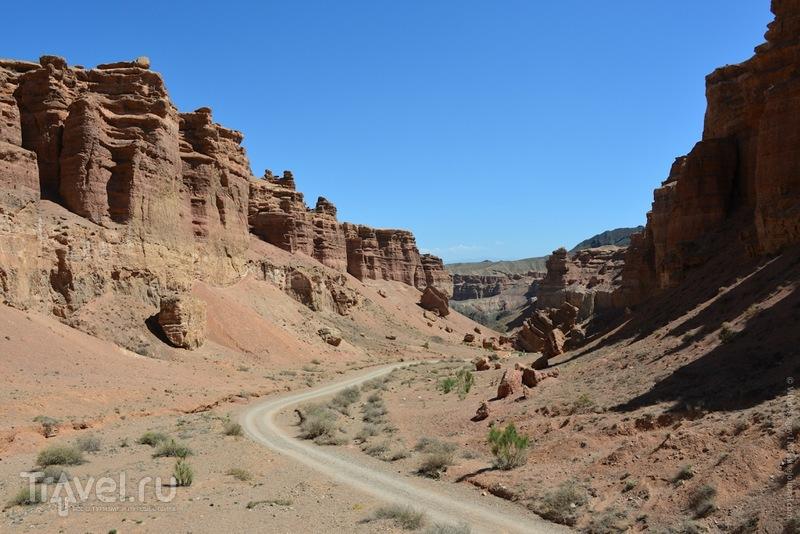 Чарынский каньон / Фото из Казахстана