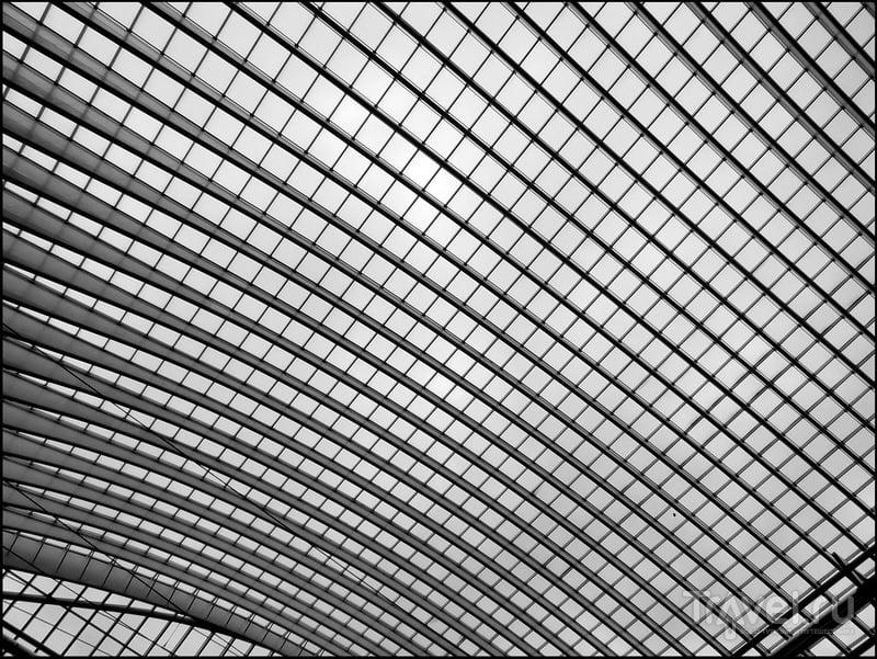 Gare de Liege-Guillemins. Вокзал в Льеже / Фото из Бельгии