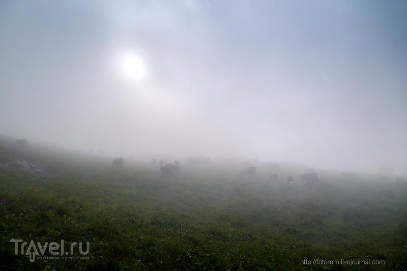 Кавказ. Утро в горах / Фото из России
