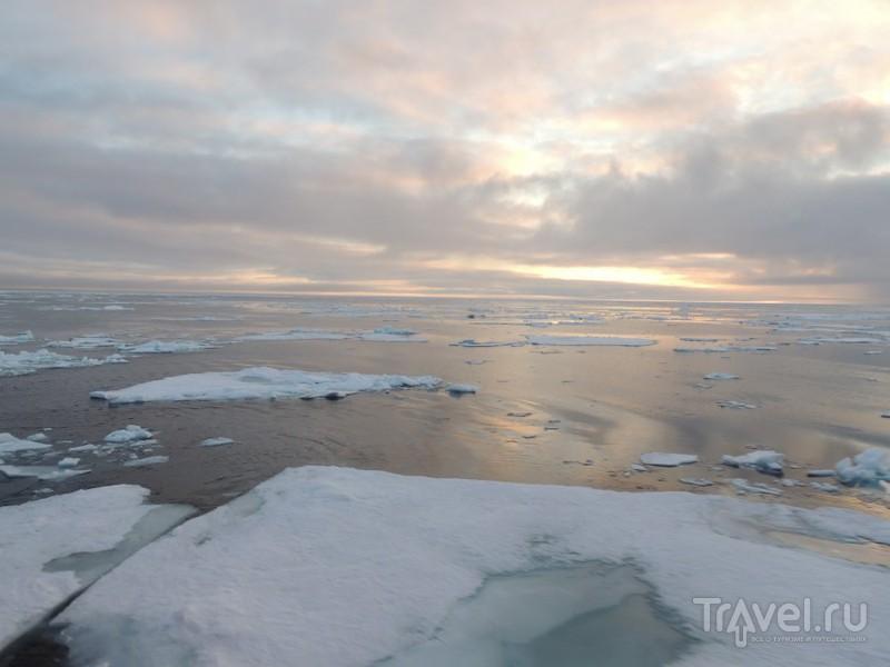 Арктические льды / Фото из России