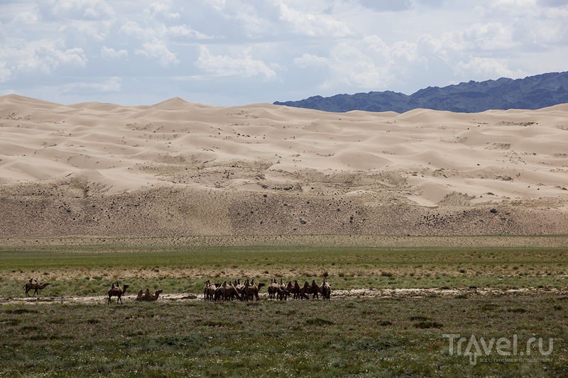 Пески Хонгорын элс / Монголия