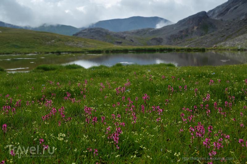 Кавказ. Непростой подъем на простой перевал