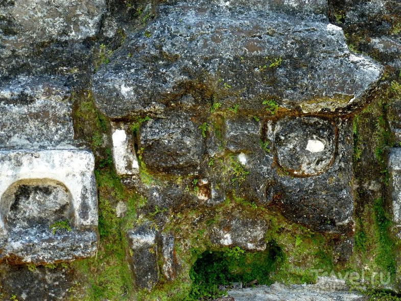 Белиз. Руины Алтун-Ха / Фото из Белиза