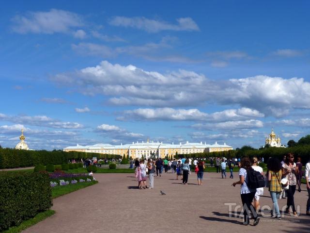 Прогулка по паркам Петергофа / Россия