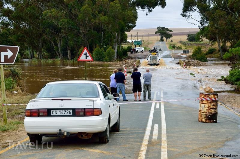 Африканское сафари. Наводнение на мысе Игольном / Фото из ЮАР