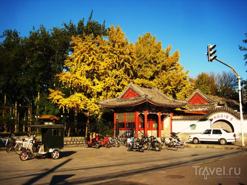 Осенью в Китай / Китай