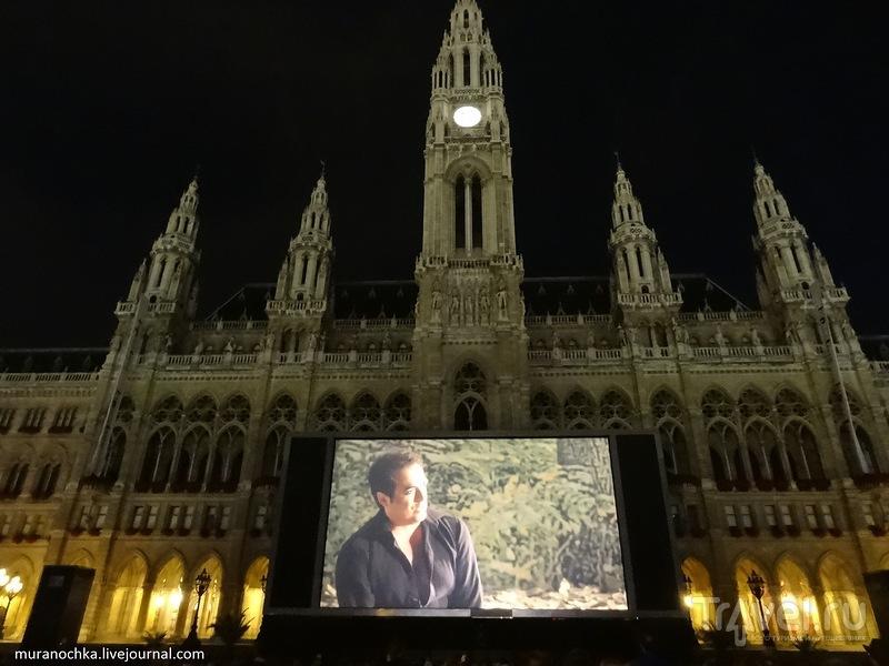Летний музыкальный фестиваль на Ратушной площади, Австрийский парламент и немного ночной Вены / Австрия