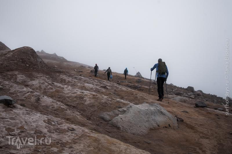 Путешествие на вулкан Горелый / Фото из России