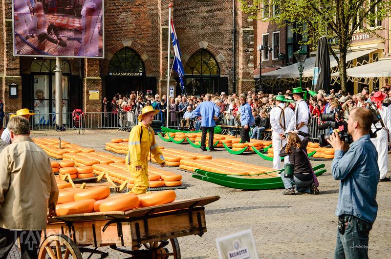 Сырный город Алкмар / Фото из Нидерландов