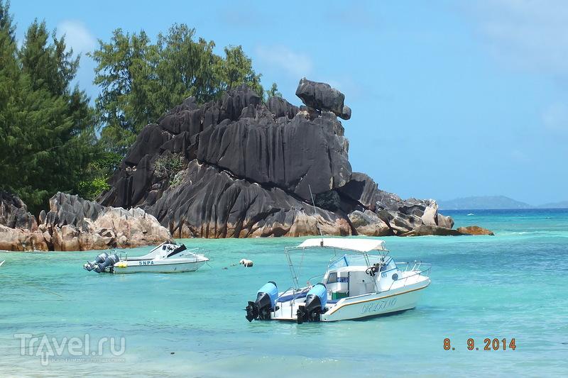 Сейшелы. Остров Курьез. Остров Сен-Пьер / Сейшелы