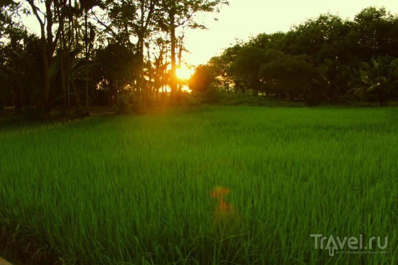 Остров гамаков и газонокосильщиков / Таиланд