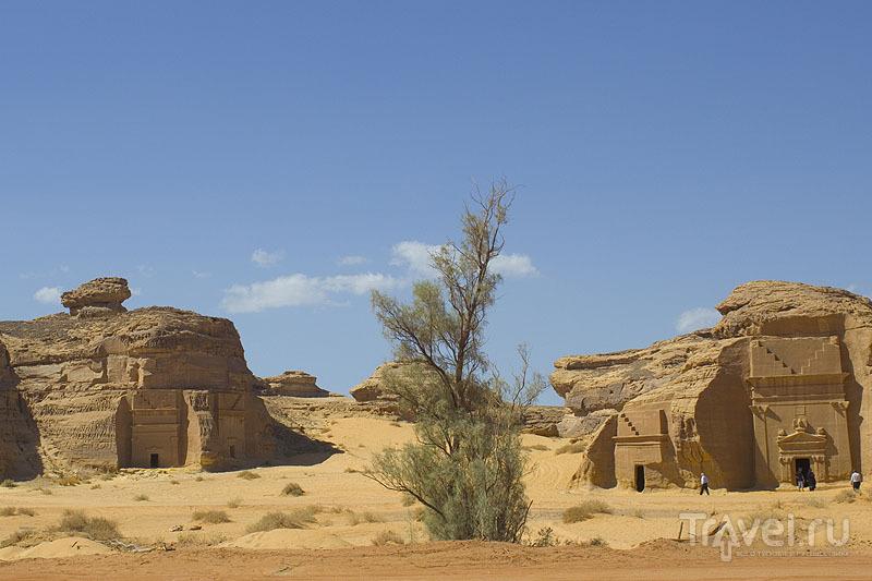 На территории Мадаин-Салех - 111 монументальных скальных захоронений / Саудовская Аравия