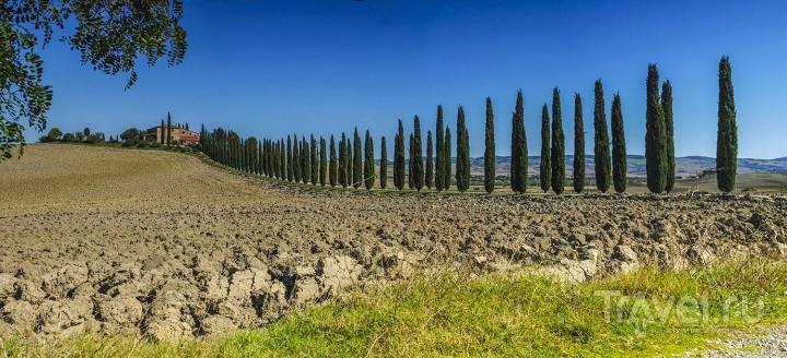 Италия. Тоскана, Лигурийское побережье / Фото из Италии