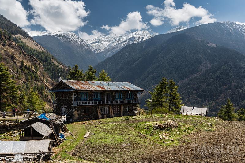 Трек по национальному парку Лангтанг (Непал) / Фото из Непала