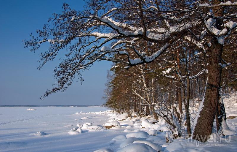 зимний отдых в лен области вами будем говорить