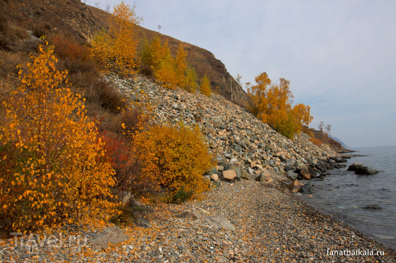 Осенний ковер Ангасолки / Фото из России
