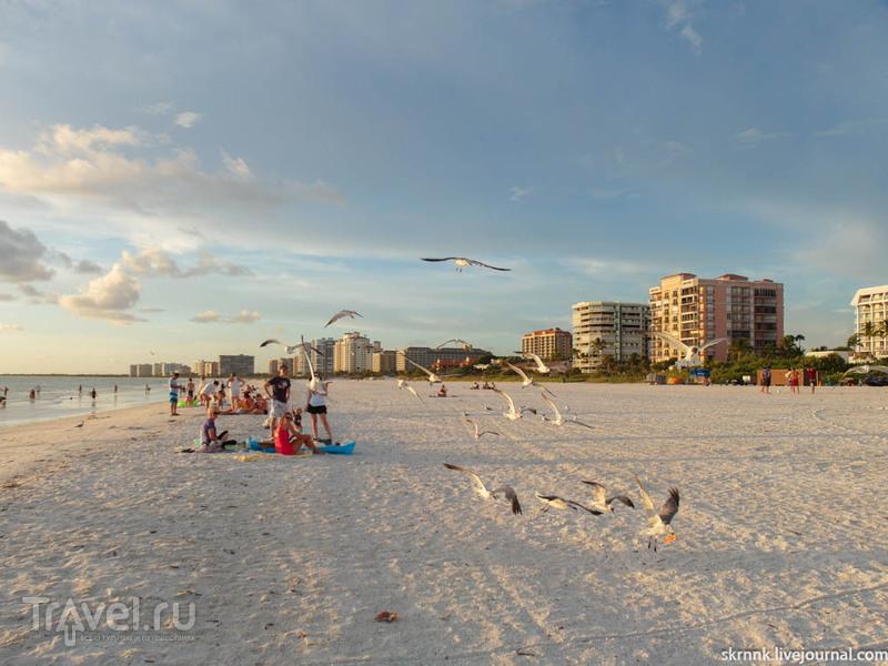 Марко-Айленд. Курортный городок на западном побережье Флориды / Фото из США