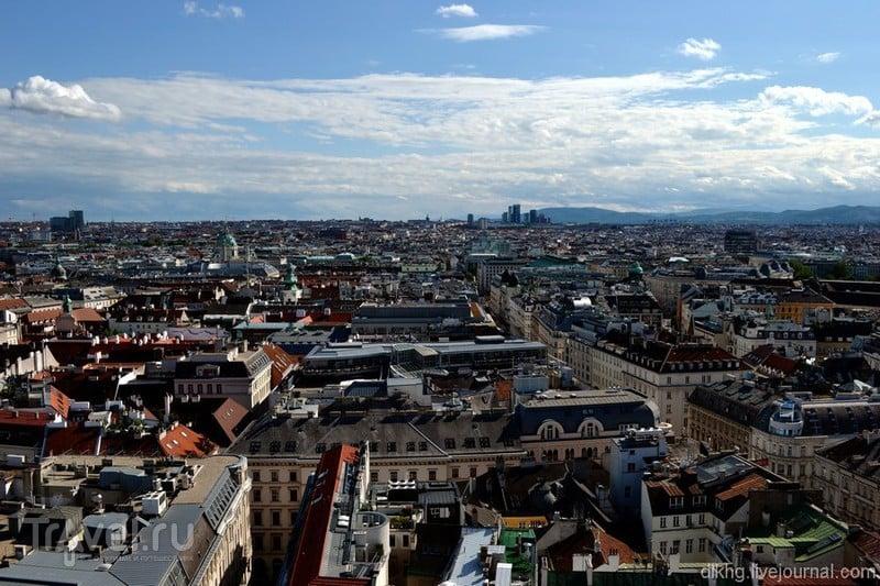 Две башни собора святого Стефана / Австрия